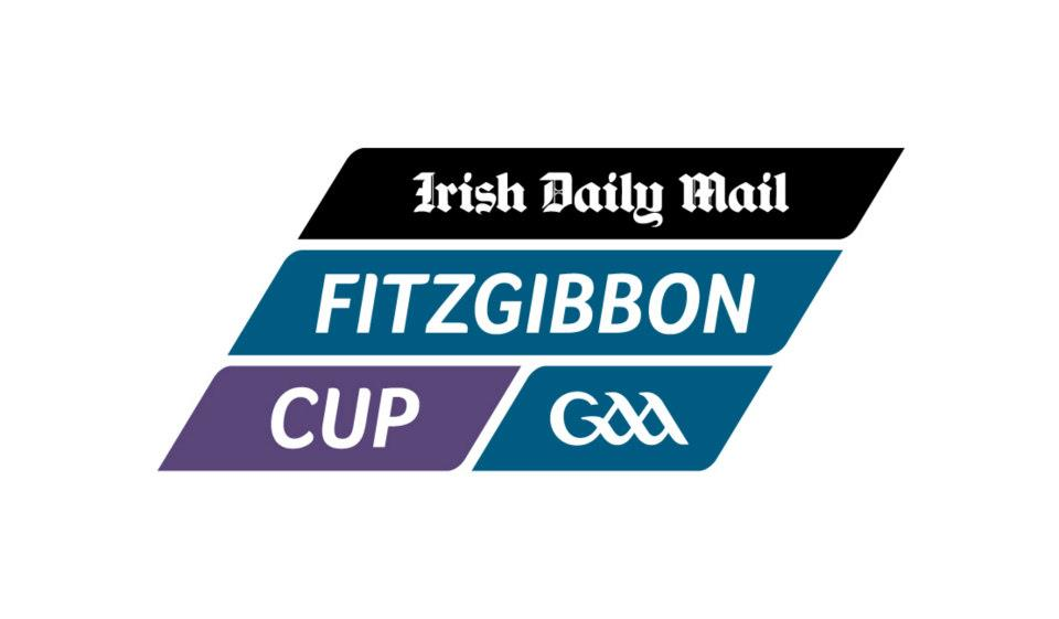 Cream of Munster Hurling to arrive in Belfast for Fitzgibbon Cup